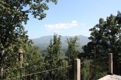 Bryson City Single Family Home For Sale: 2074 Fontana Road