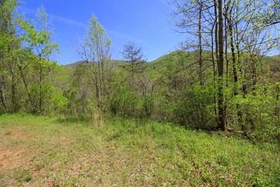 Franklin, Otto Residential Lots & Land For Sale: Jenny Lee Lane