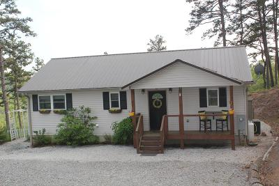 Single Family Home For Sale: 521 Pelohi Cove