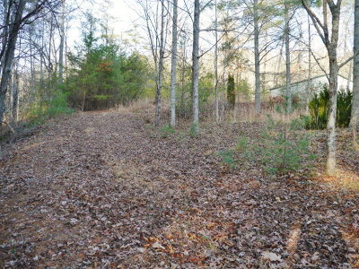 Macon County Residential Lots & Land For Sale: 204 Holly Ridge Drive