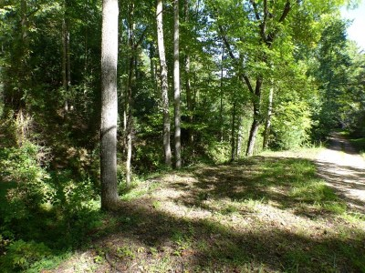 Franklin, Otto Residential Lots & Land For Sale: Lot 8 Journey Lane