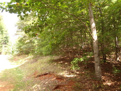 Franklin, Otto Residential Lots & Land For Sale: 00 Laurel Drive