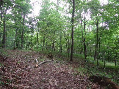 Franklin Residential Lots & Land For Sale: 00 Lyle Knob Road