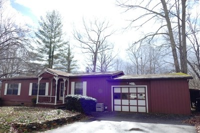 Macon County Single Family Home For Sale: 234 Hiland Terrace