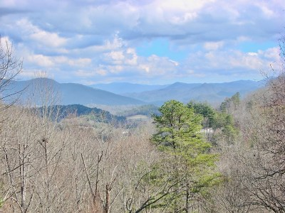 Swain County Single Family Home For Sale: 739 Possum Holler
