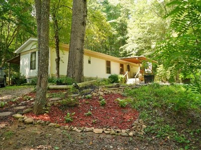 Macon County Single Family Home For Sale: 8 Rich Road