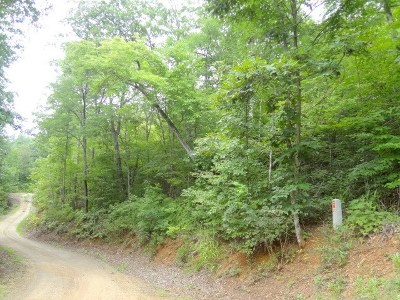 Franklin Residential Lots & Land For Sale: 00 Mystic Mountain Ridge