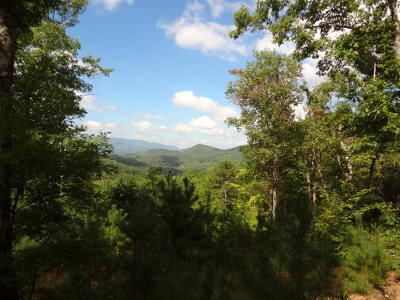 Macon County Residential Lots & Land For Sale: 00 Cliff View Drive