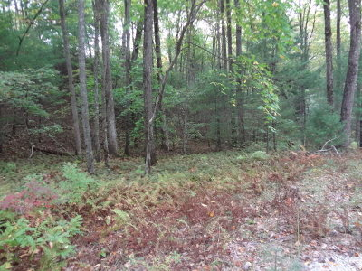 Macon County Residential Lots & Land For Sale: Lot 5 Beech Hollow Drive