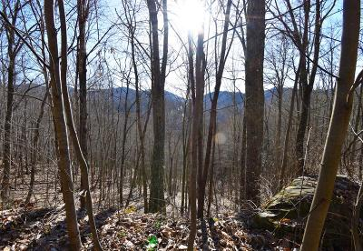 Franklin, Otto Residential Lots & Land For Sale: 000 Hickory Gap Road