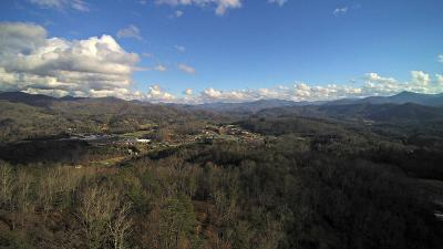 Residential Lots & Land For Sale: 126 Hollywalk Trail