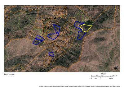 Residential Lots & Land For Sale: 000 Black Bear Falls