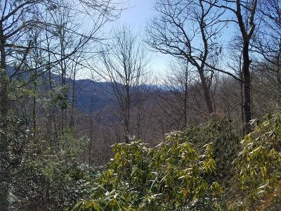 Residential Lots & Land For Sale: Lot 34 Blizzard Ridge