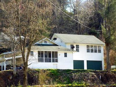 Jackson County Single Family Home For Sale: 39 Peach Tree Road