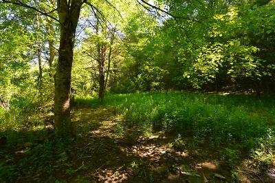 Residential Lots & Land For Sale: 19801 Wayah Rd