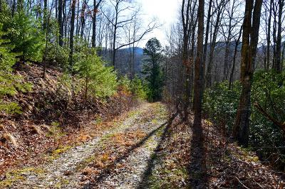 Residential Lots & Land For Sale: 930 Long Branch Rd