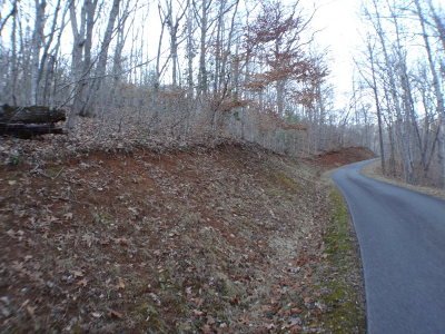 Franklin, Otto Residential Lots & Land For Sale: Lt 45-48 Trimont Mountain Trail