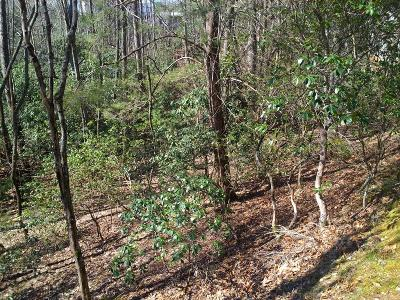Otto Residential Lots & Land For Sale: 00 Nantahala Circle