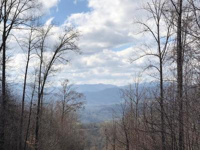 Franklin, Otto Residential Lots & Land For Sale: 00 Fulcher Vista Drive