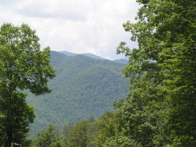 Franklin, Otto Residential Lots & Land For Sale: Lot 2 Mystic Mountain Ridge