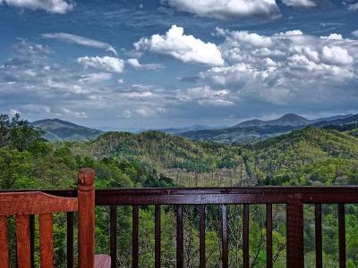 Single Family Home For Sale: 580 Morgan Ridge Road