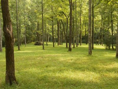 Franklin Residential Lots & Land For Sale: 000 West Old Murphy Road