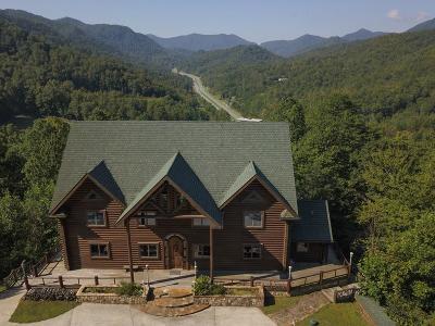 Single Family Home For Sale: 585 Bear Ridge Lane