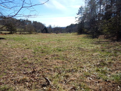 Franklin, Otto Residential Lots & Land For Sale: Fred Dalton Road