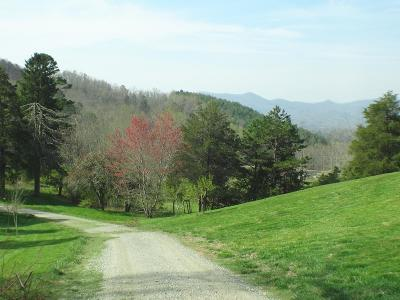 Franklin, Otto Residential Lots & Land For Sale: 00 Stone Brook Heights