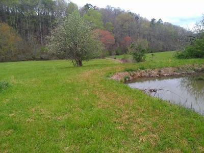 Franklin, Otto Residential Lots & Land For Sale: 203 John Deal Road