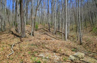 Franklin, Otto Residential Lots & Land For Sale: 00 Lot 9 Coon Creek Road