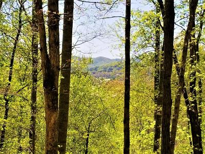 Macon County Residential Lots & Land For Sale: 00 Crepe Myrtle Lane