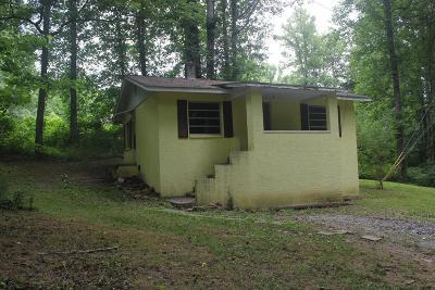 Swain County Single Family Home For Sale: 26 Shady Lane