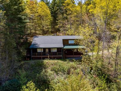 Jackson County Single Family Home For Sale: 67 Little Peanut