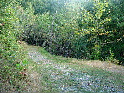 Residential Lots & Land Sold: Lot 15 Indian Trail