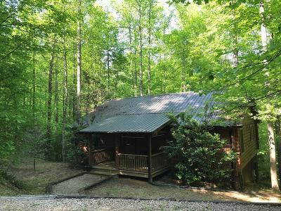 Swain County Single Family Home For Sale: 67 Village Cove Lane