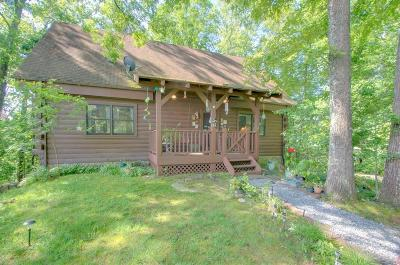 Jackson County Single Family Home For Sale: 115 Ray Cline Rd