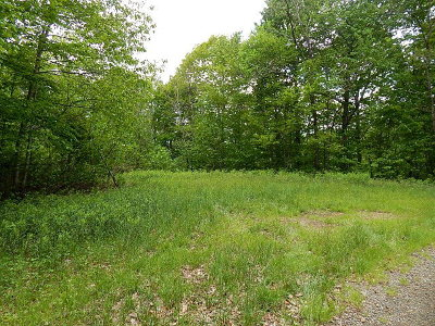 Franklin, Otto Residential Lots & Land For Sale: 00 Sharons Bluff