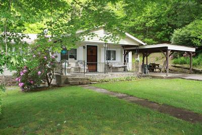 Swain County Single Family Home For Sale: 8641 Alarka Road