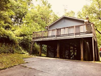 Swain County Single Family Home For Sale: 272 Dehart Mill Road