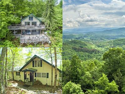 Macon County Single Family Home For Sale: 1887 Lyle Knob Road