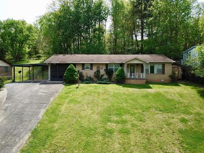 Macon County Single Family Home For Sale: 74 Lakeview Dr.