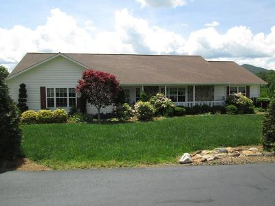 Franklin Single Family Home For Sale: 173 West Coventry Drive