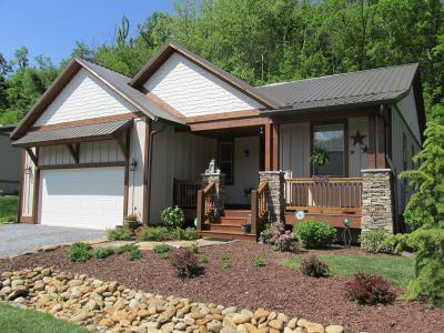 Jackson County Single Family Home For Sale: 47 N. Sundrops Trail