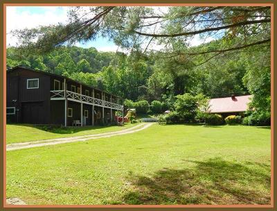 Macon County Single Family Home For Sale: 871/875 Weaver Cabe Road
