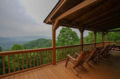 Single Family Home For Sale: 1242 Big Rockys Road