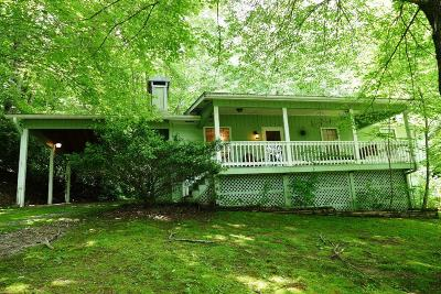 Otto Single Family Home For Sale: 155 Pleasant Cove Road