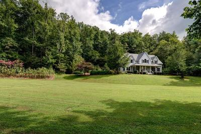 Franklin, Otto Single Family Home For Sale: 4004 Ellijay Road