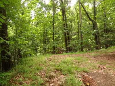 Macon County Residential Lots & Land For Sale: 00 Deerwood Drive