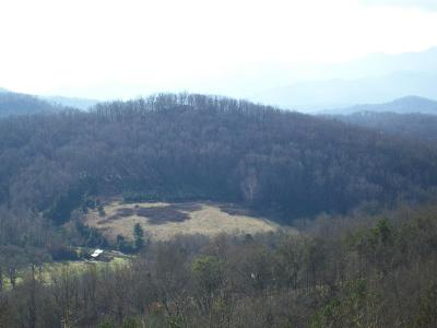 Franklin, Otto Residential Lots & Land For Sale: 3251 Cat Creek Rd